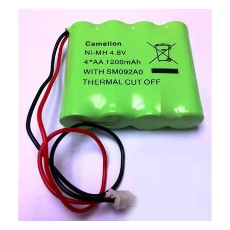 Pack pile lithium rechargeable de remplacement pour MG6250 Paradox réf-MGPILE6250